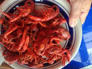cooked crawdads